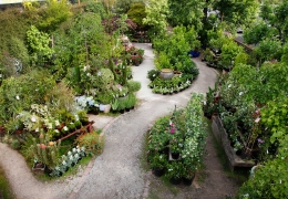How to: Help your garden thrive through summer